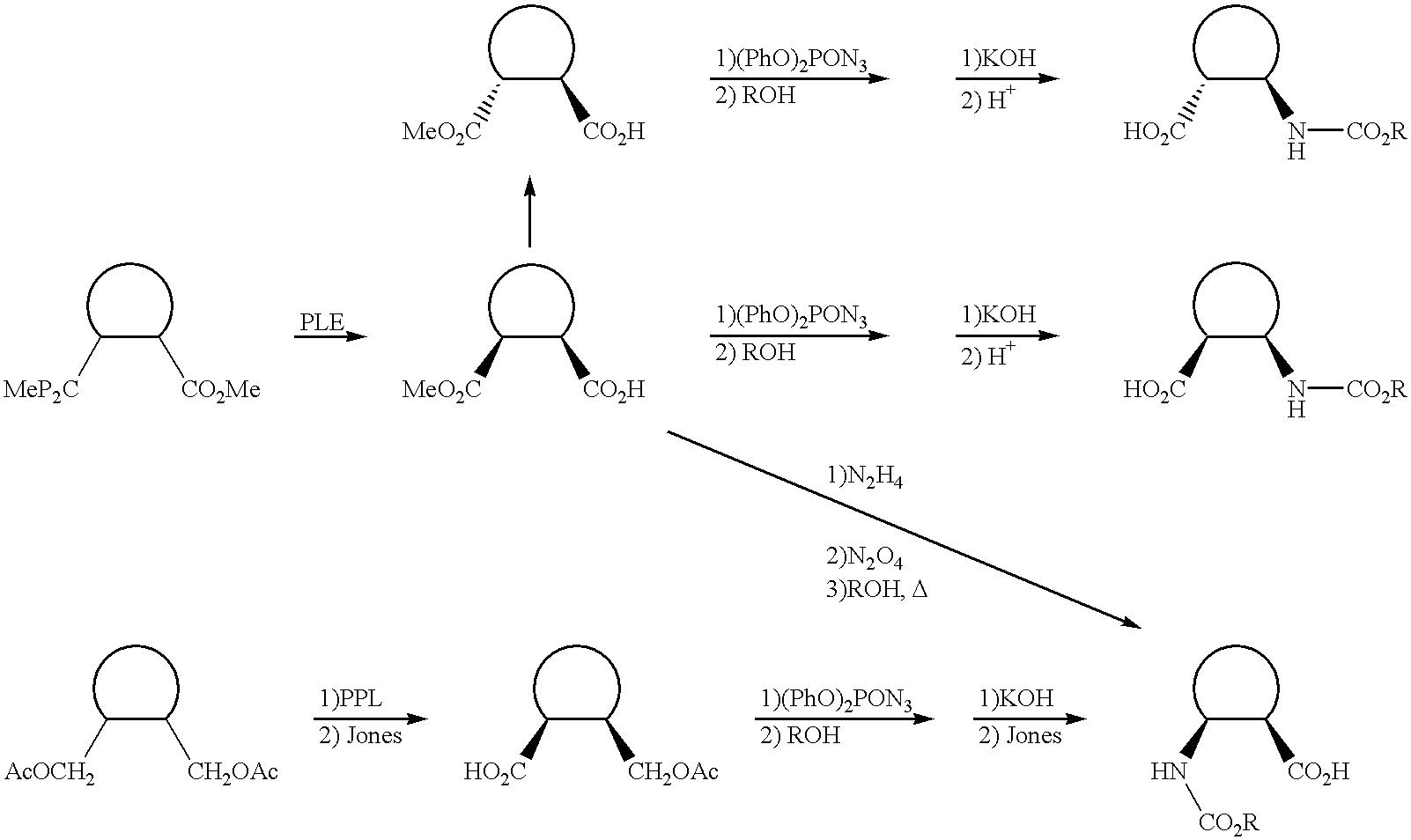 Figure US06420169-20020716-C00037