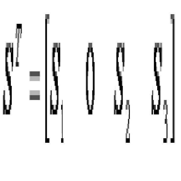 Figure 112007071118740-pat00052