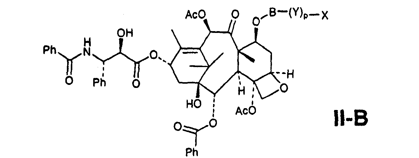 Figure CN101019024BC00031