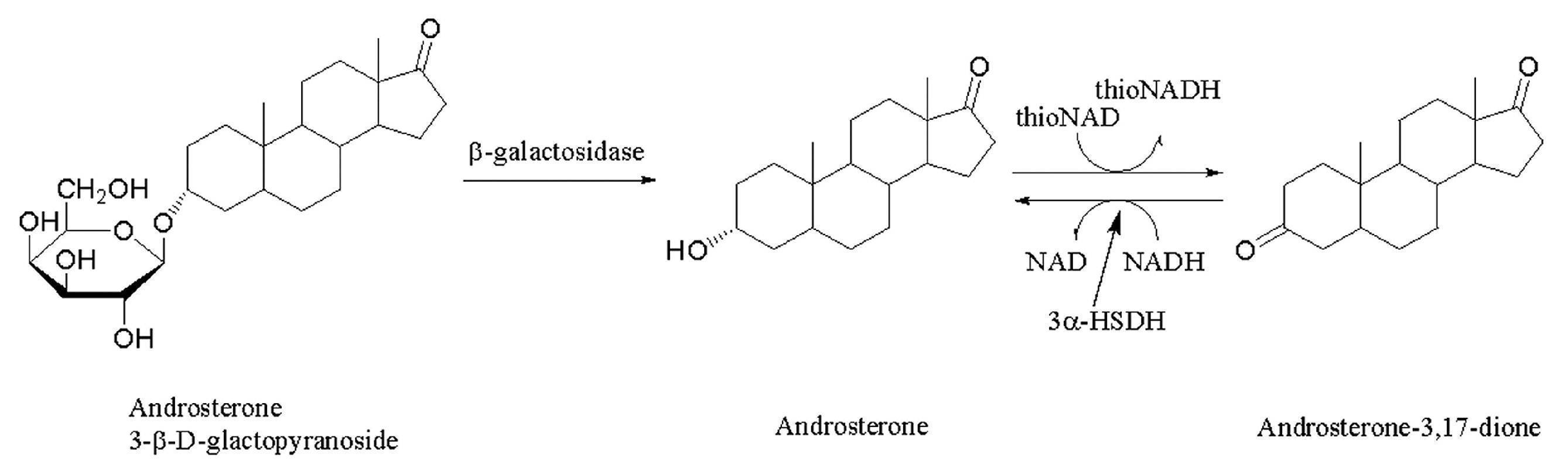 WO2012128338A1 - タンパク質お...