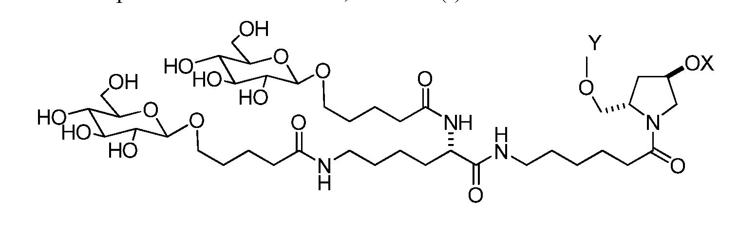 Figure imgf000021_0005