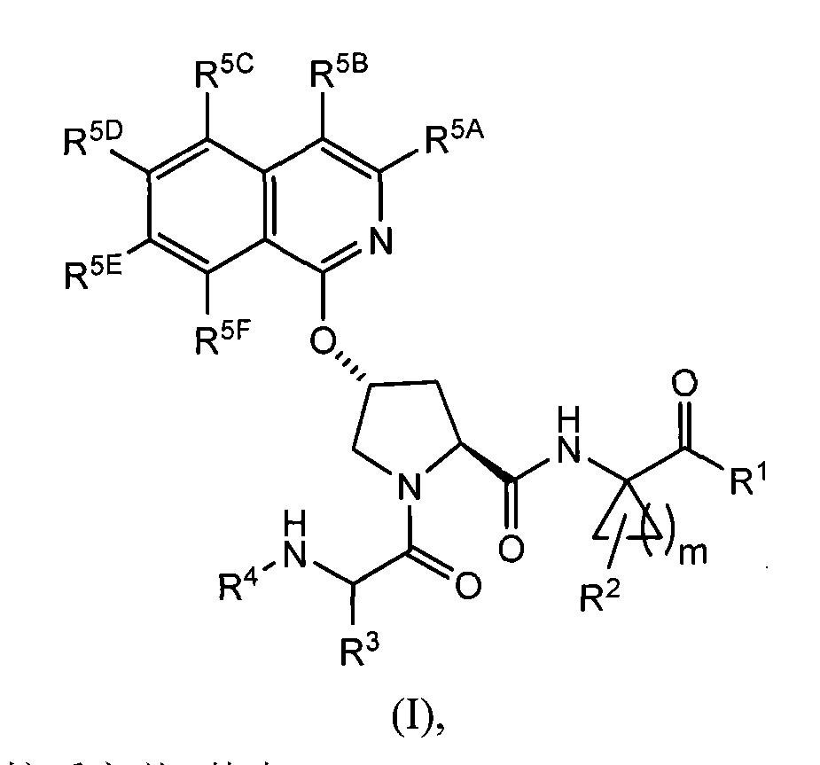 Figure CN101541784BD00121