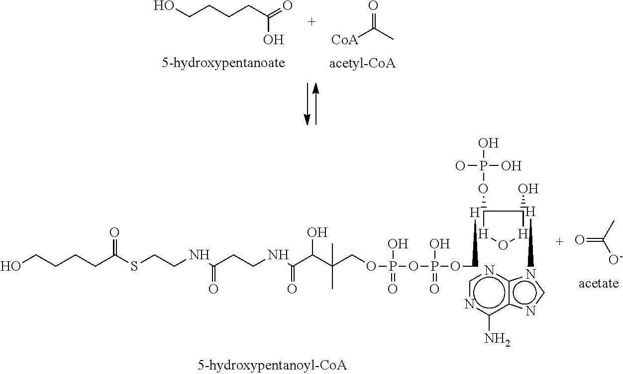 Figure US09102961-20150811-C00053