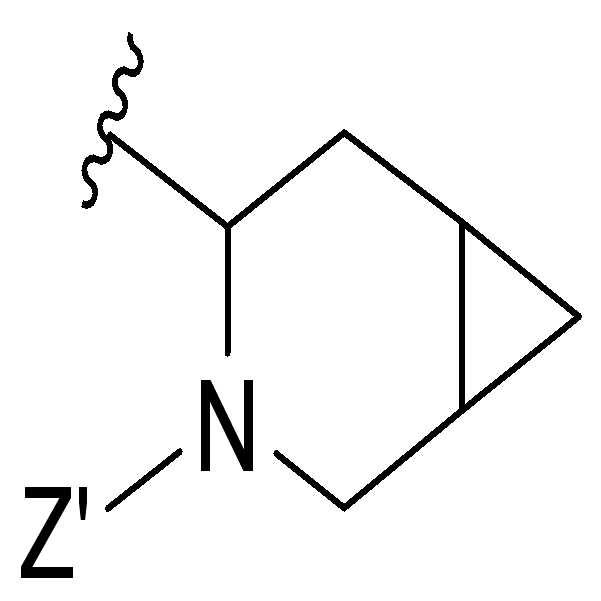 Figure pct00384
