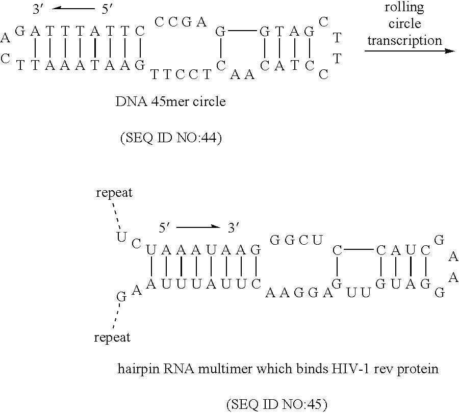 Figure US07135312-20061114-C00006