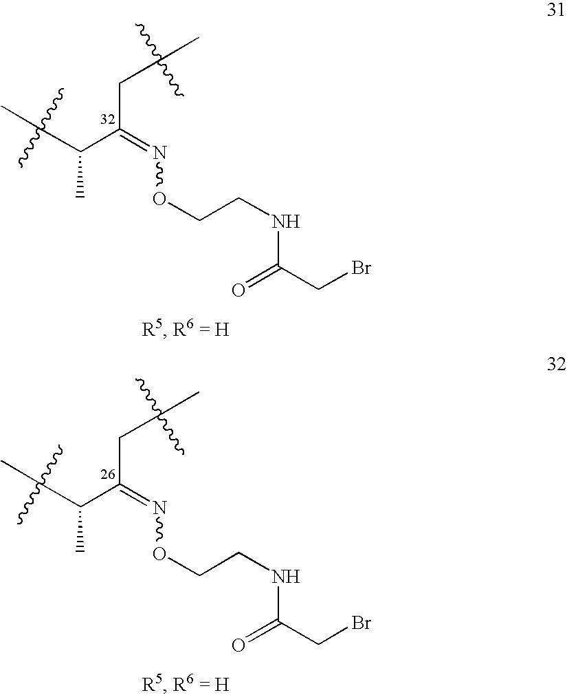 Figure US20060246518A1-20061102-C00024