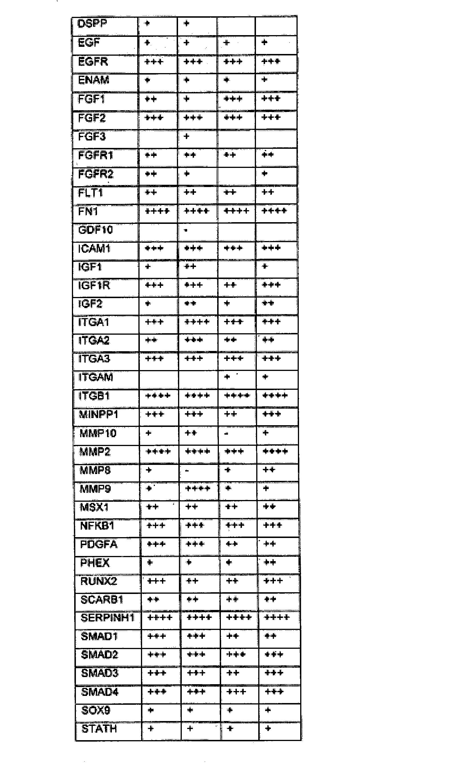 Figure CN102176919AD00621
