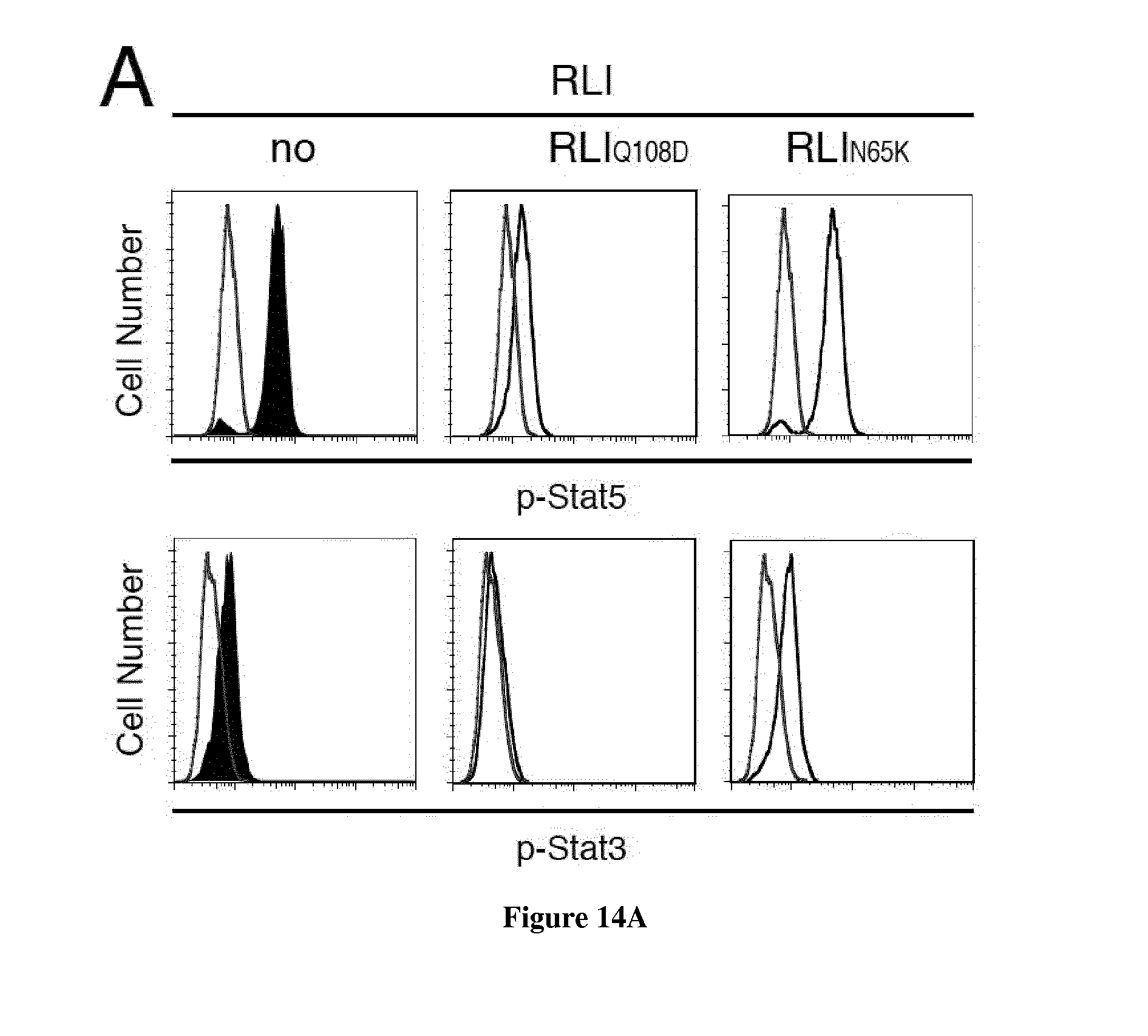 US20180258174A1 - Specific interleukin-15 (il-15) antagonist polypeptide  and uses thereof for the treatment of inflammatory and auto-immune diseases  - Google Patents