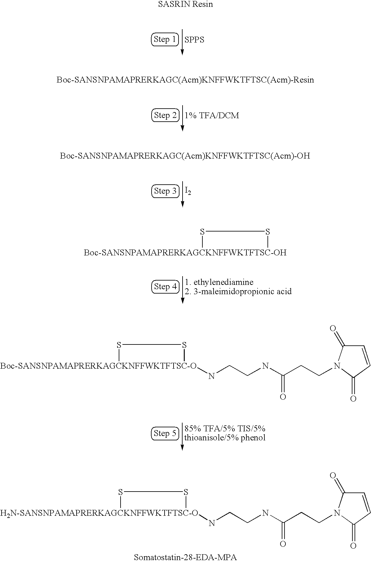 Figure US20090175821A1-20090709-C00028