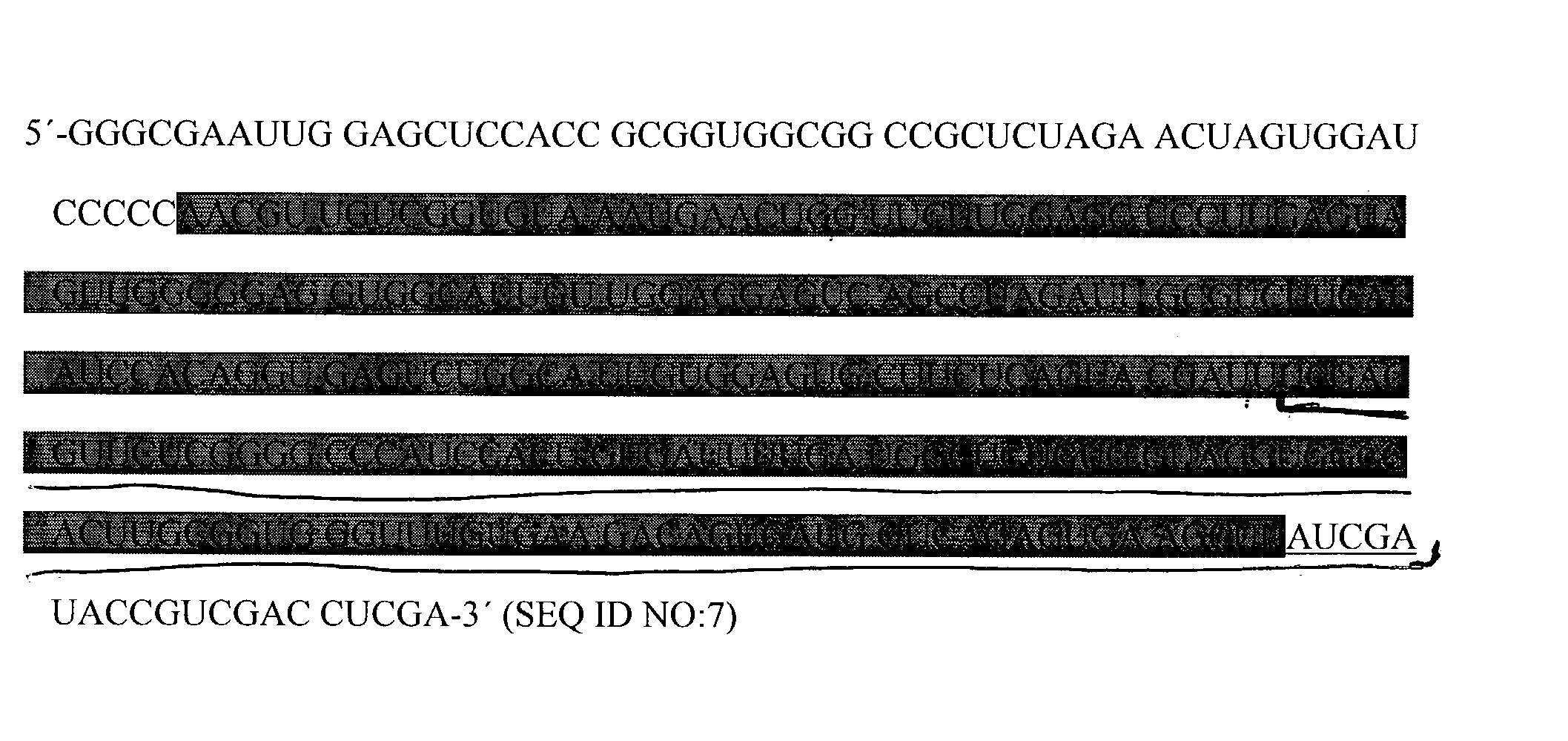 Figure US20030190654A1-20031009-P00001
