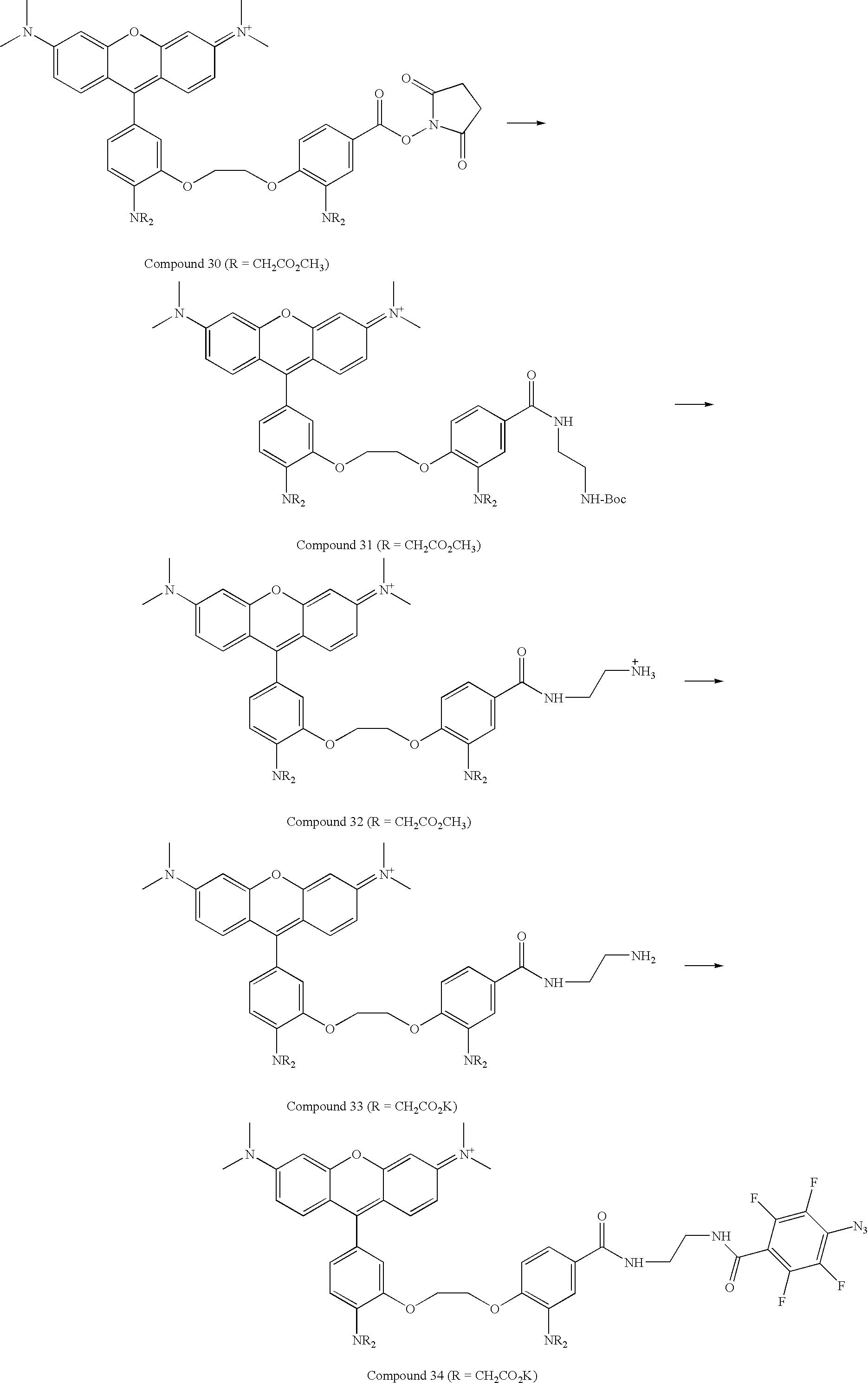 Figure US07776533-20100817-C00036