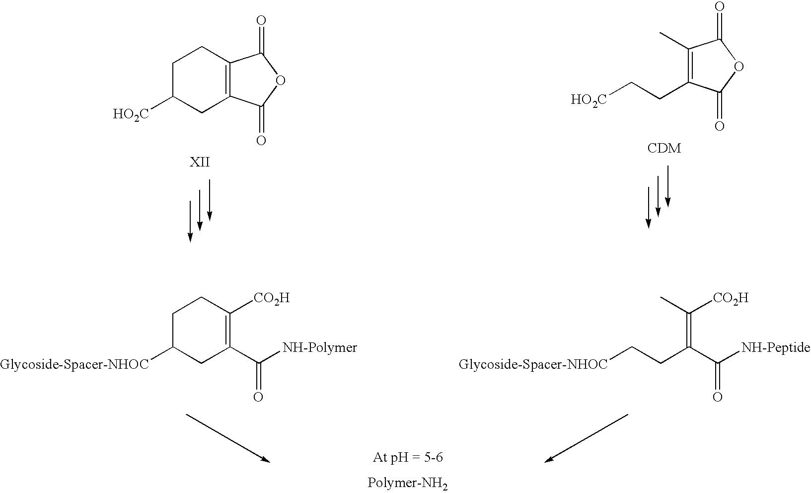 Figure US20090023890A1-20090122-C00012