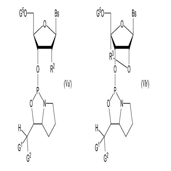 Figure 112015015674384-pct00019