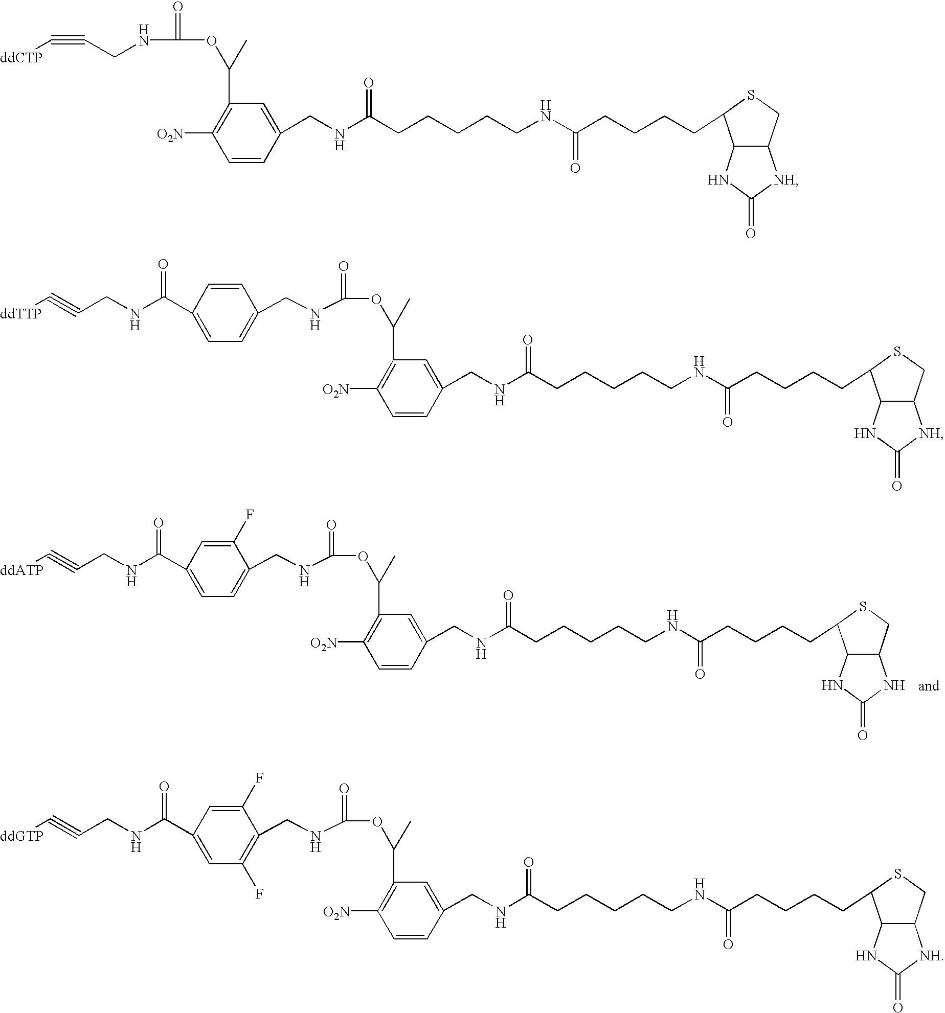 Figure US20030027140A1-20030206-C00021