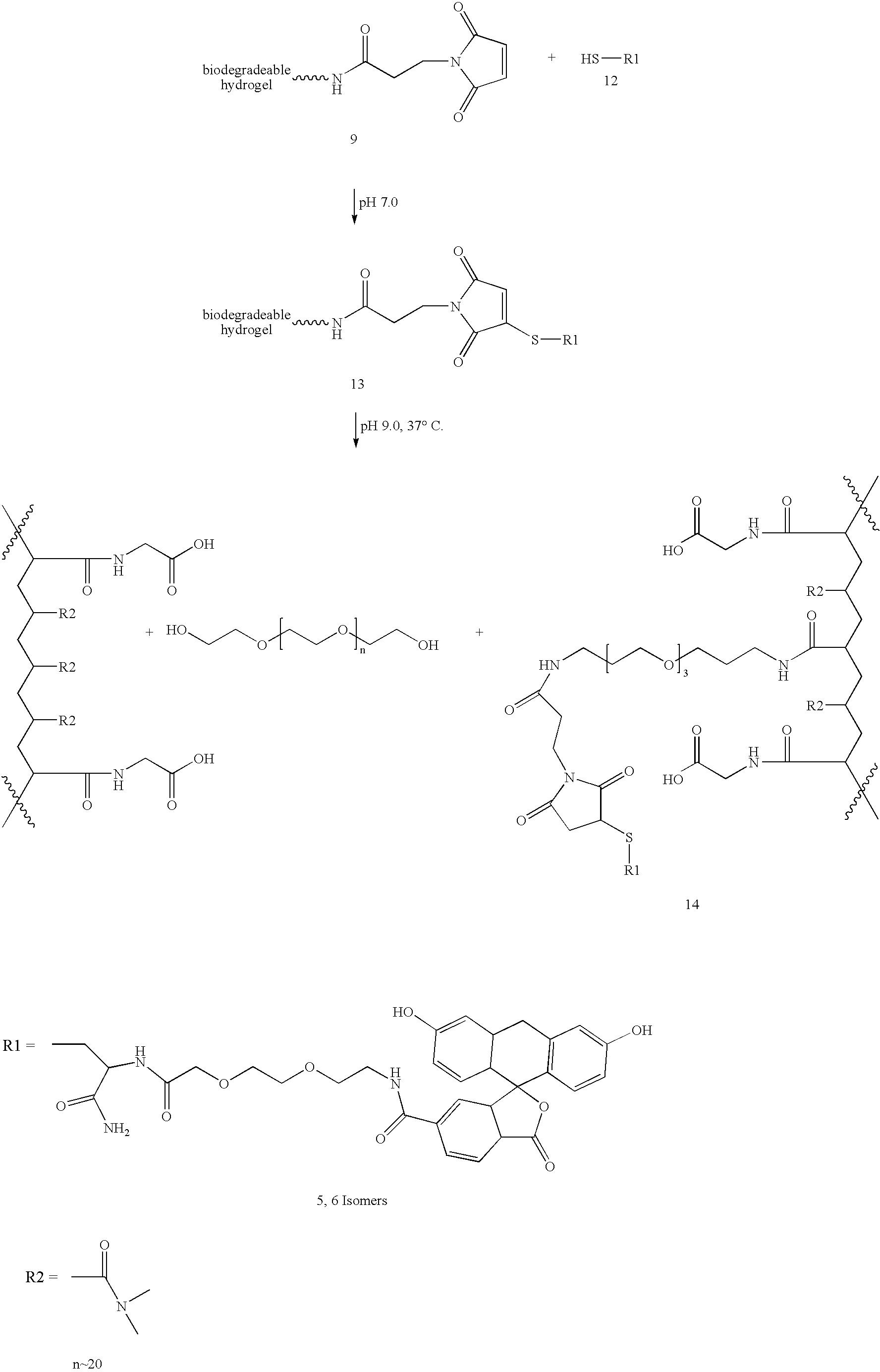 Figure US20060002890A1-20060105-C00011
