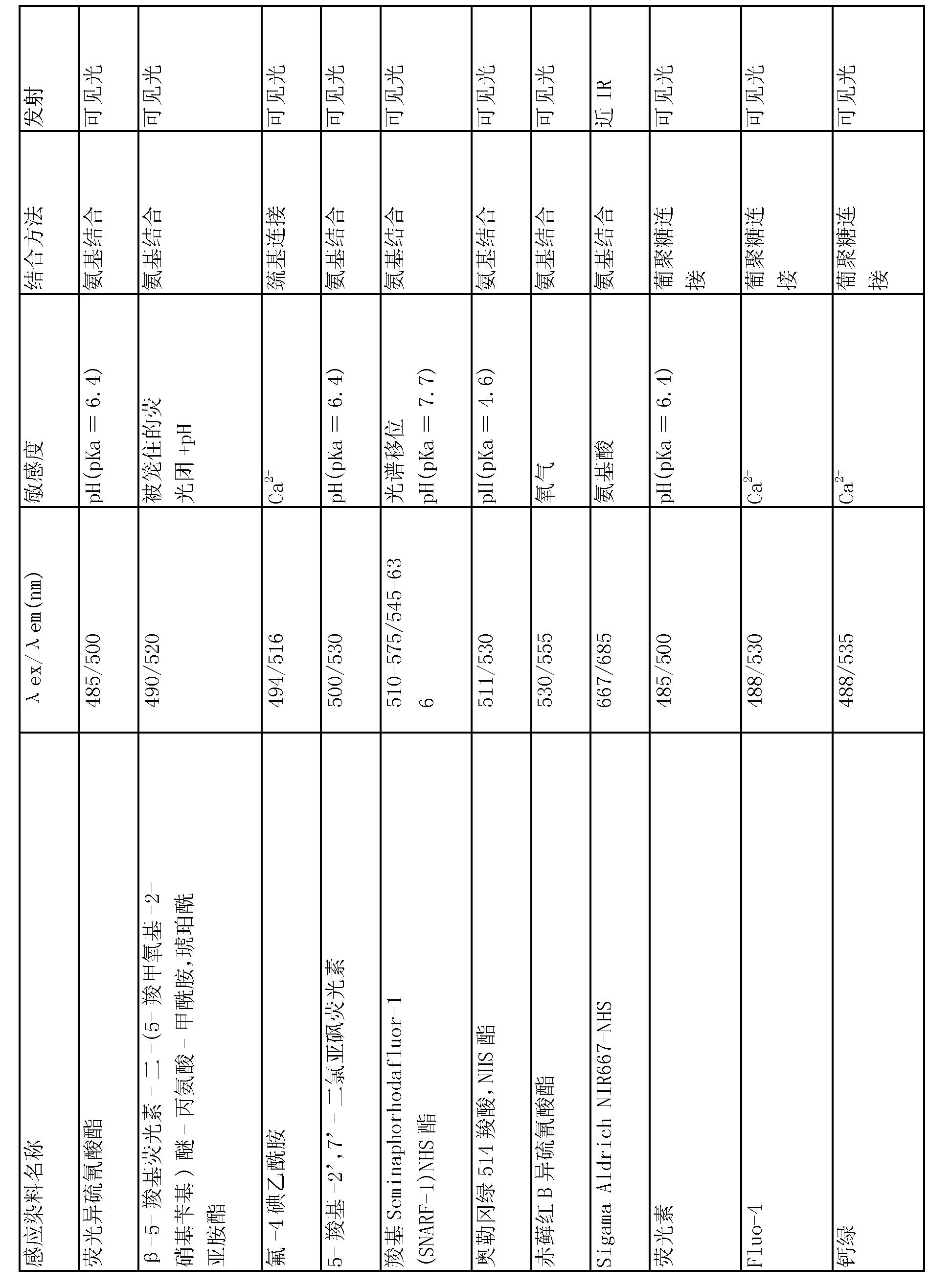 Figure CN101198672BD00081