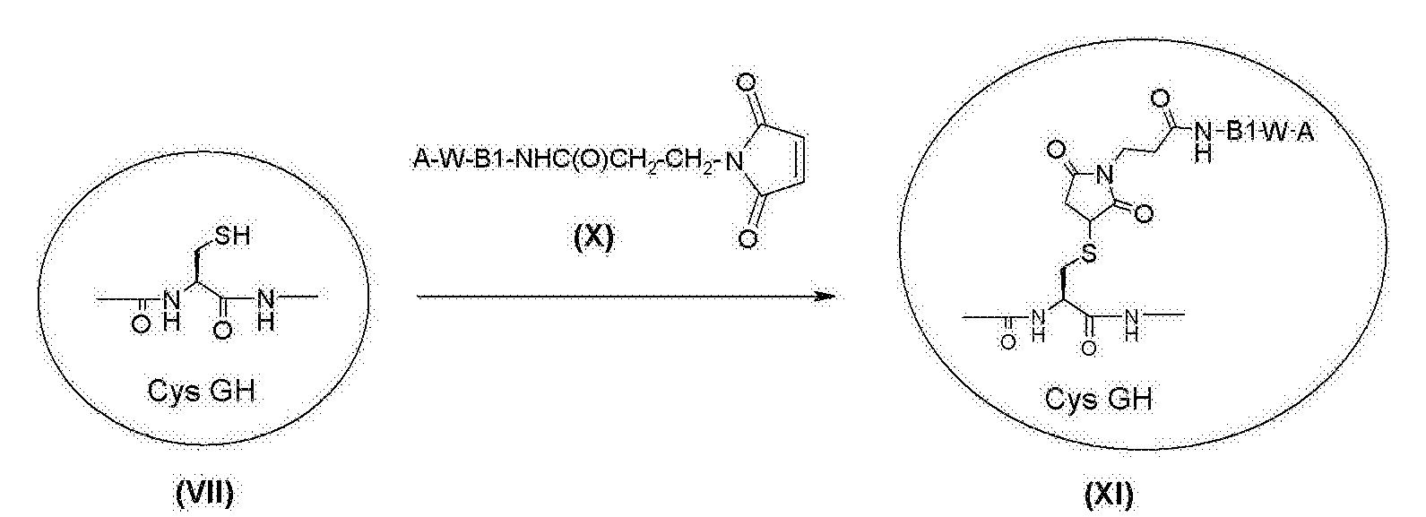 Figure CN103002918BD01312