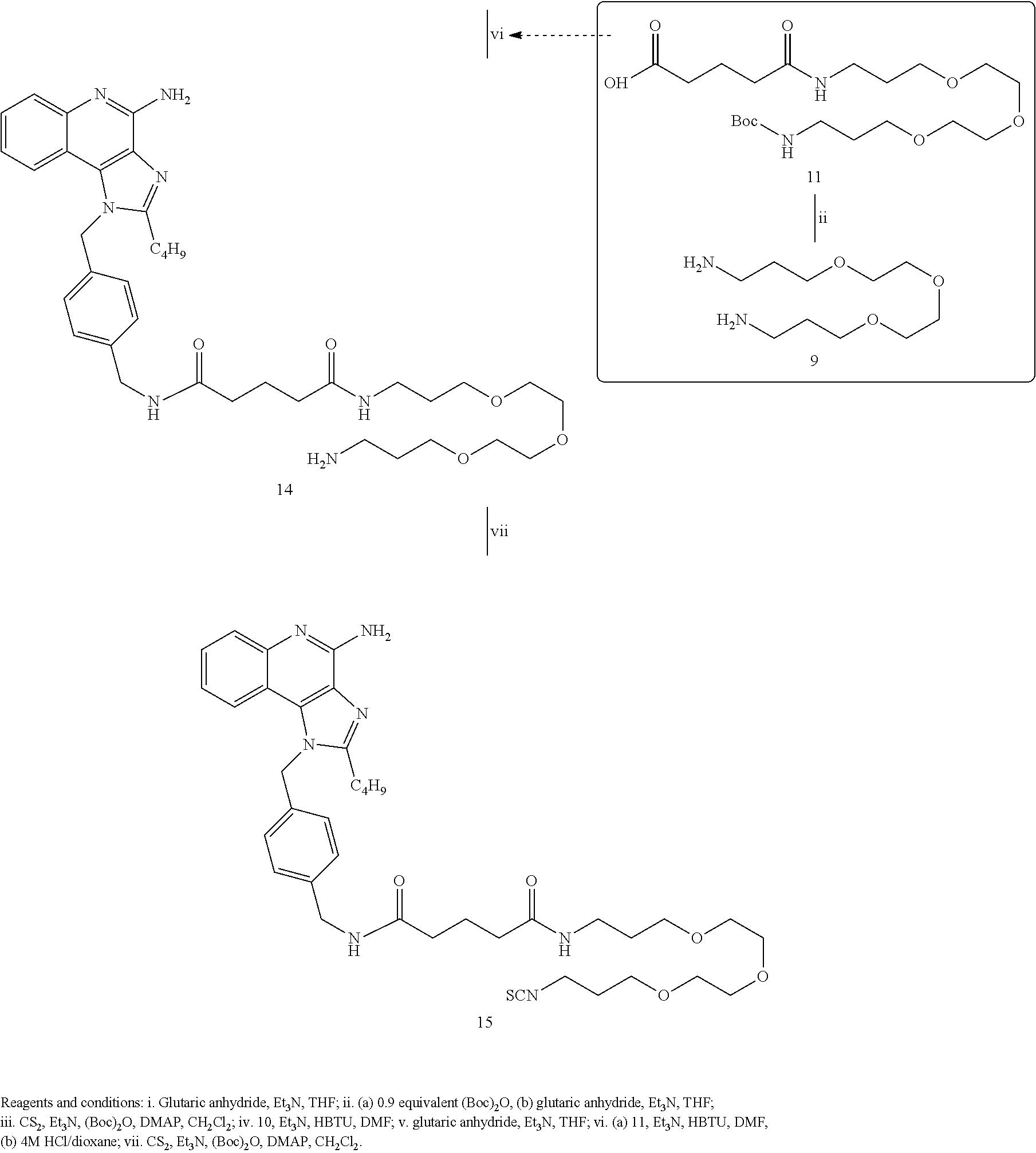 Figure US08728486-20140520-C00024