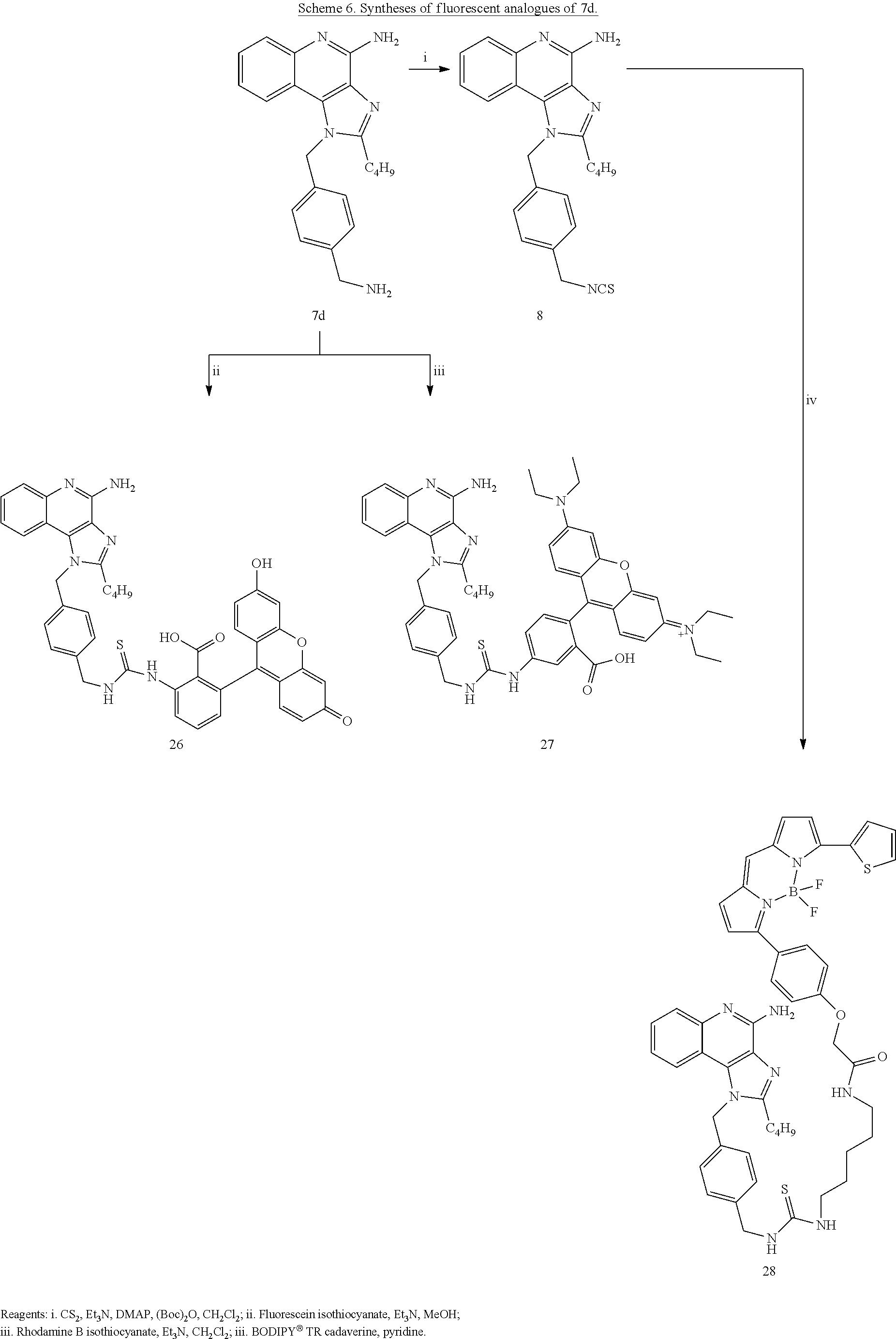 Figure US08728486-20140520-C00040