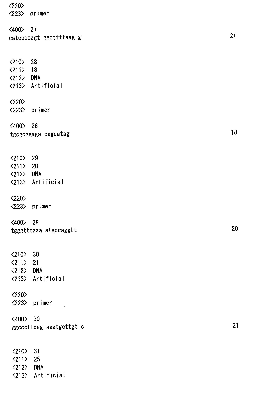 fritz 5.32 activation key