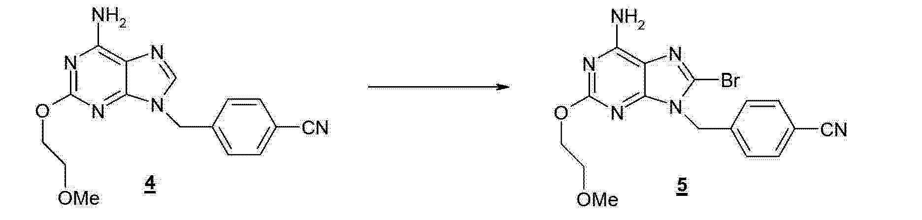 Eta Diagram Of A Monkey Skeleton Looks Pretty Close Same Pelvis