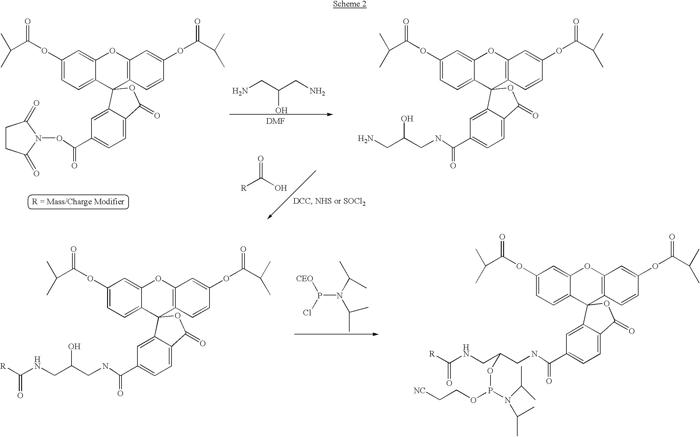 Figure US06514700-20030204-C00026