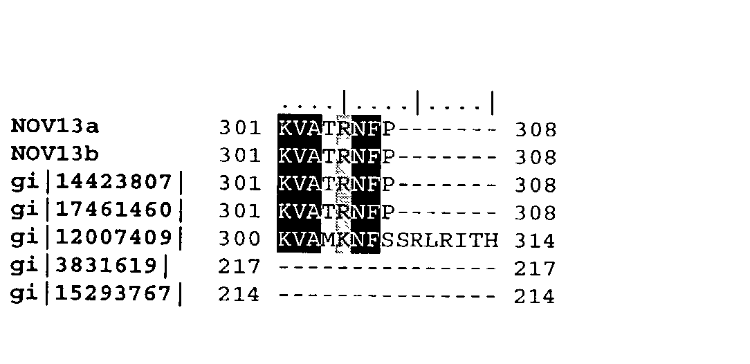 Figure US20040033493A1-20040219-P00033