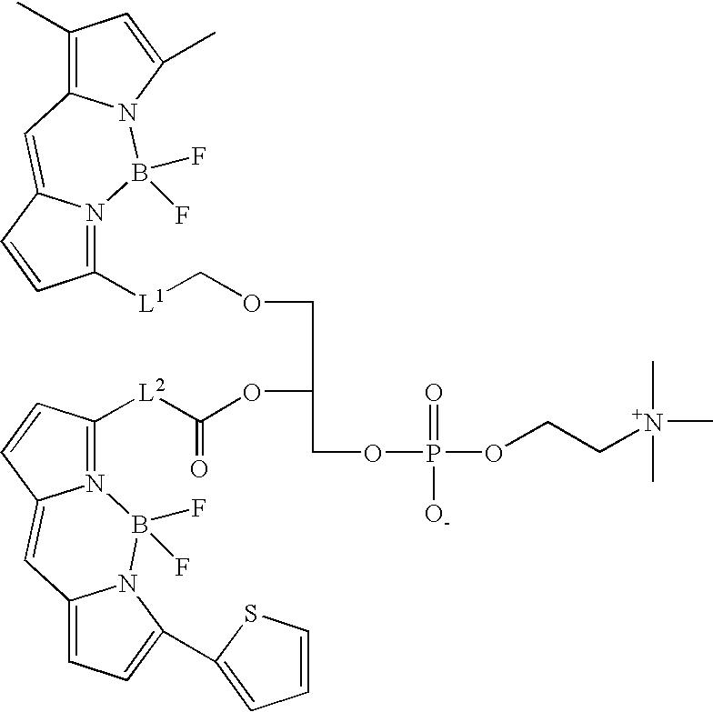 Figure US08513451-20130820-C00030