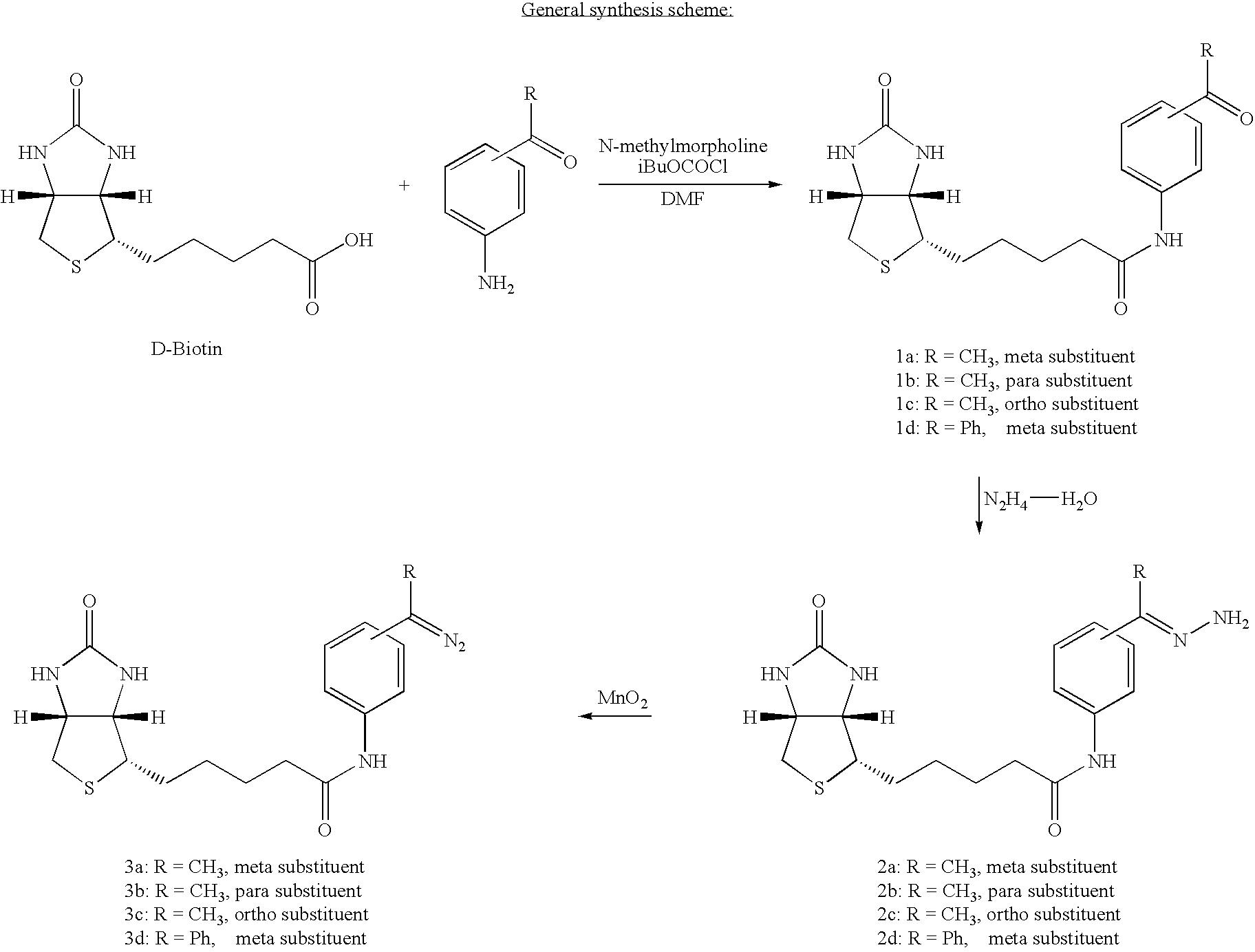 Figure US07060441-20060613-C00024