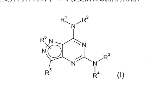 Figure CN101362765BD00041