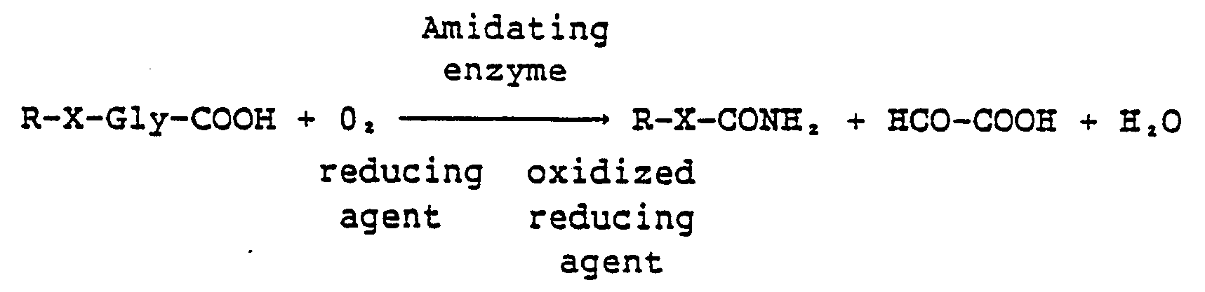 Peptidyl amidating enzyme definition