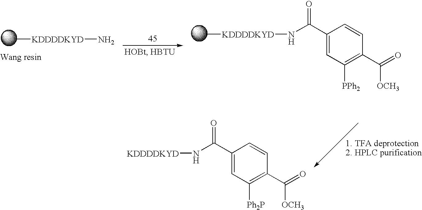Figure US20060276658A1-20061207-C00044