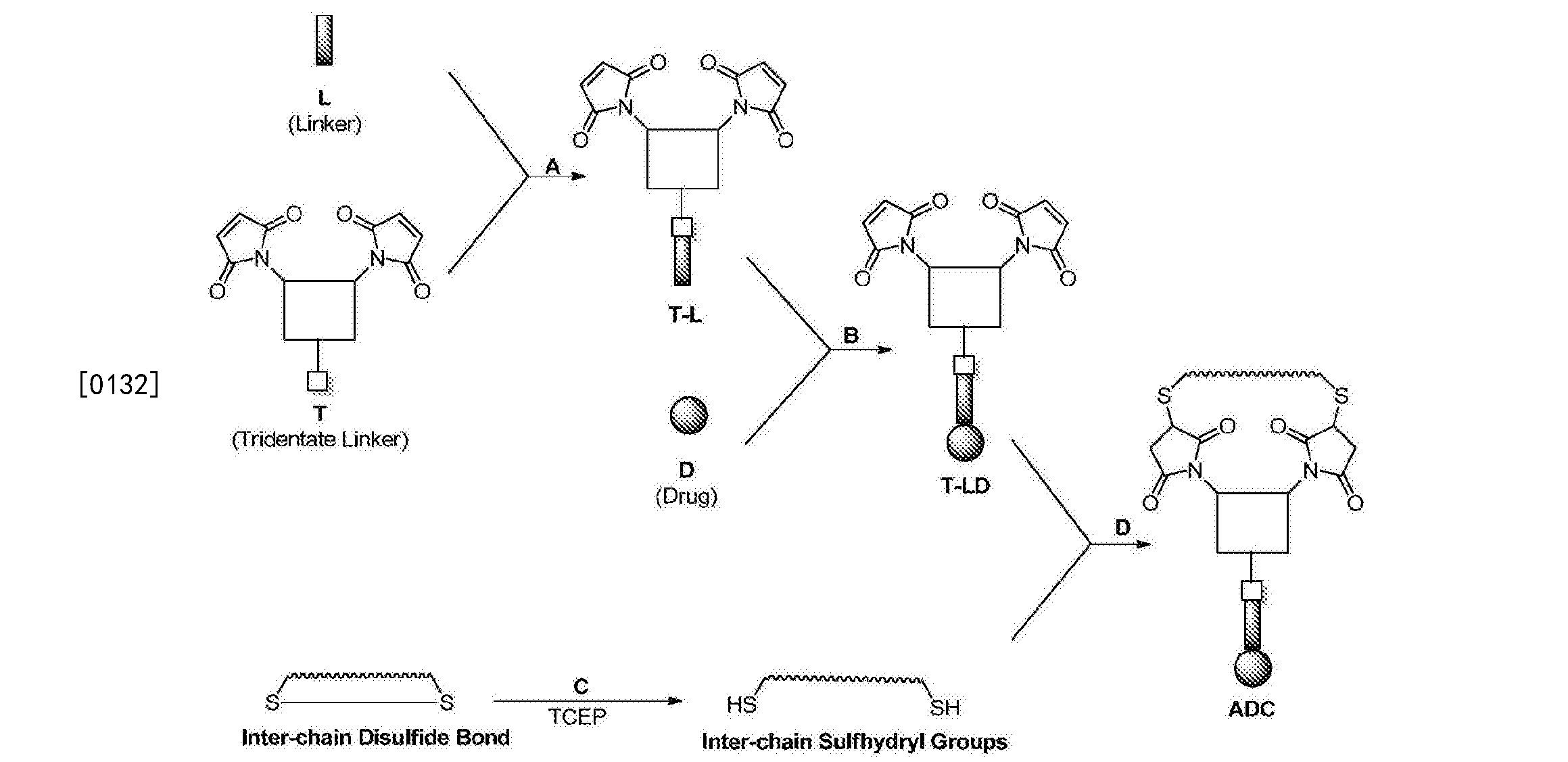 Figure CN103933575BD00231