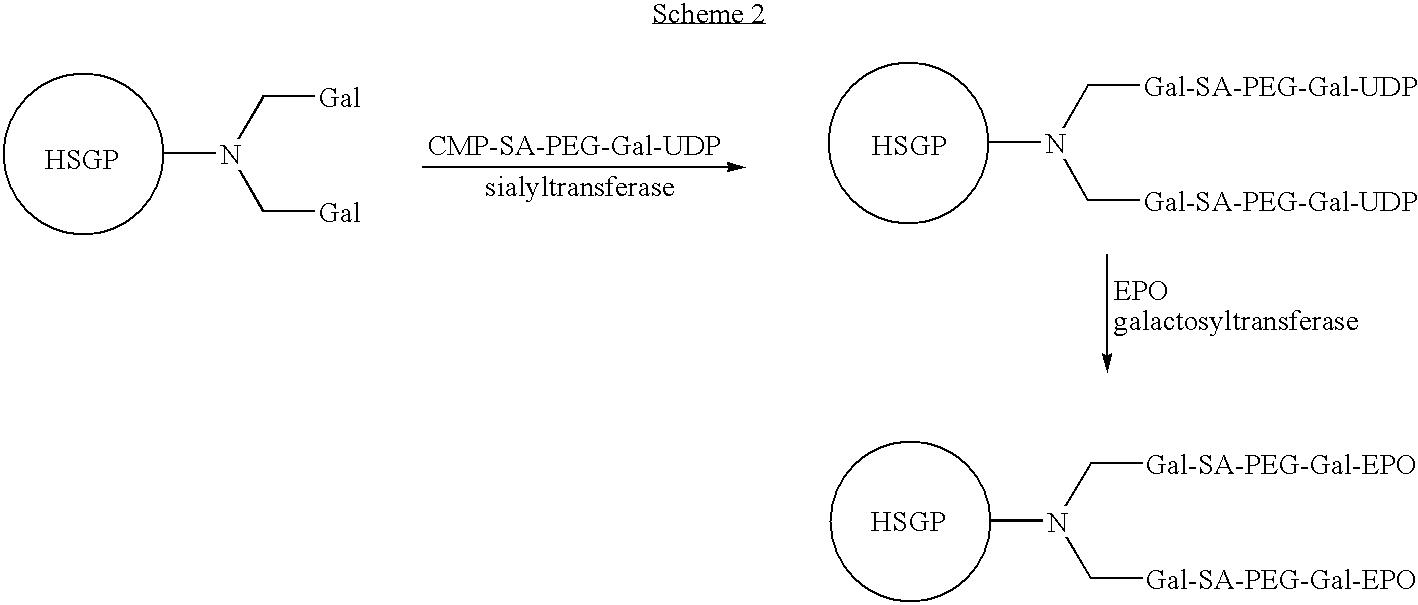 Figure US08008252-20110830-C00019
