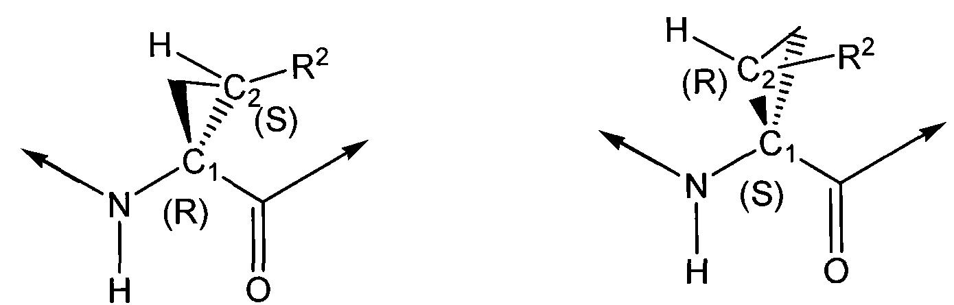 Figure CN101541784BD00211
