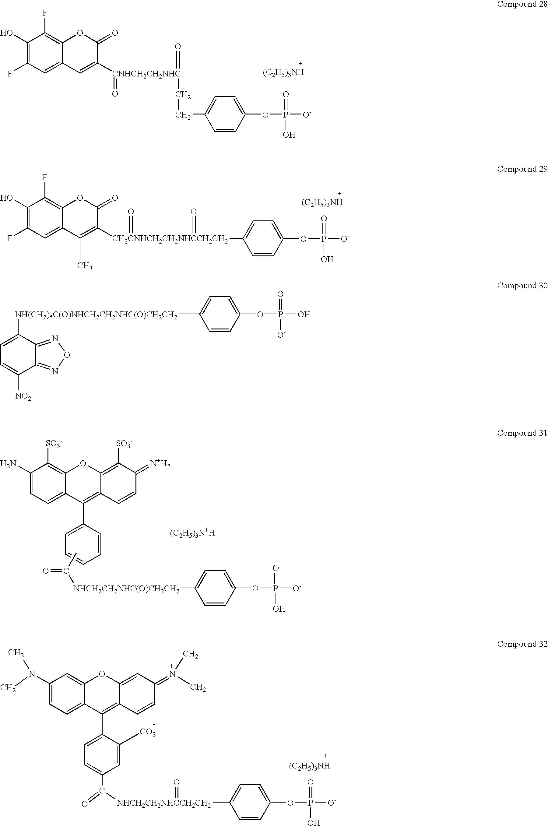 Figure US07282339-20071016-C00019