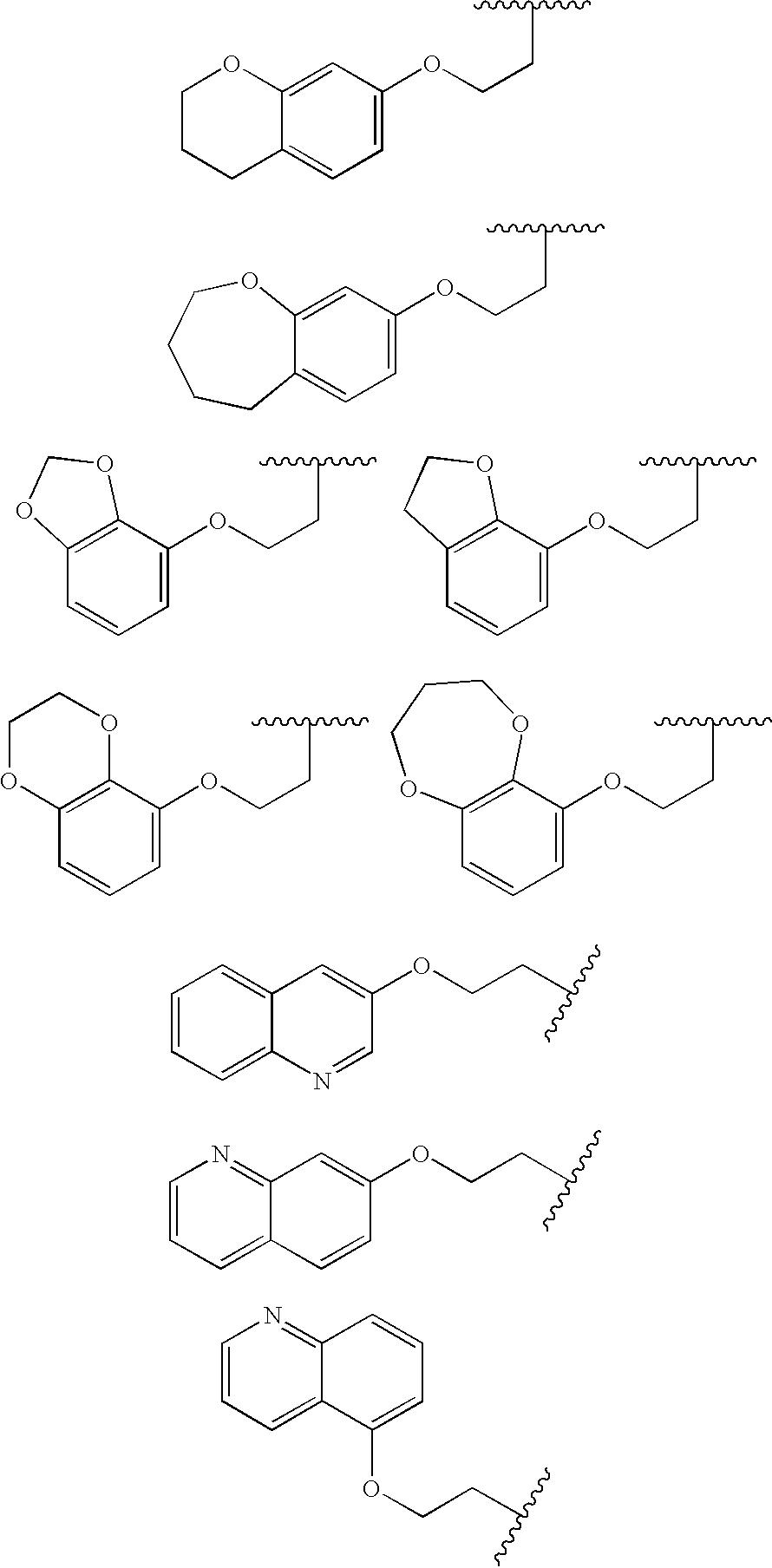 Figure US20100009983A1-20100114-C00254