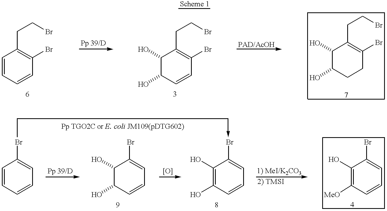Figure US06242604-20010605-C00031