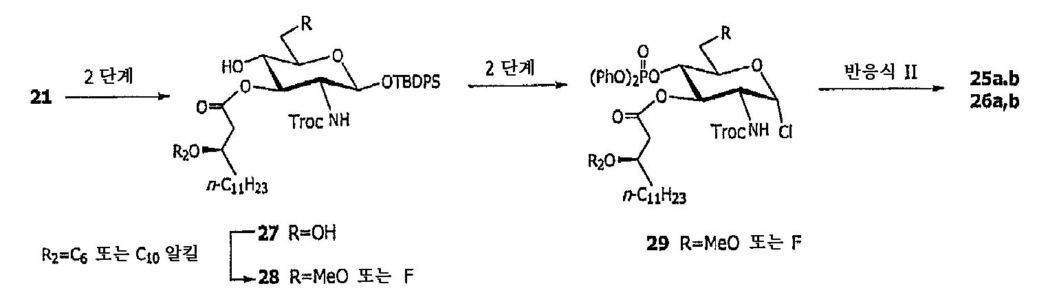 Figure 112005036305208-pct00019
