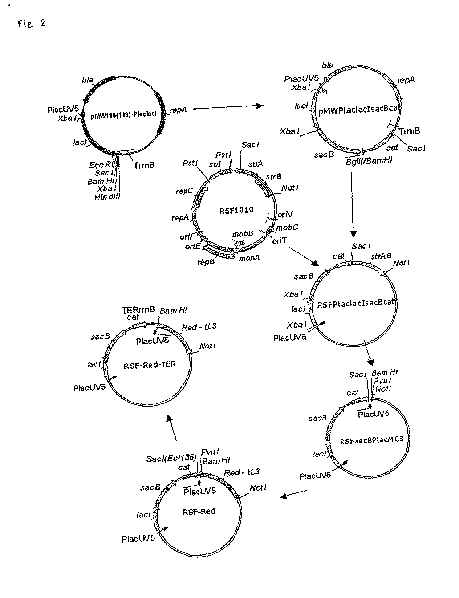 chloroquine phosphate in uk