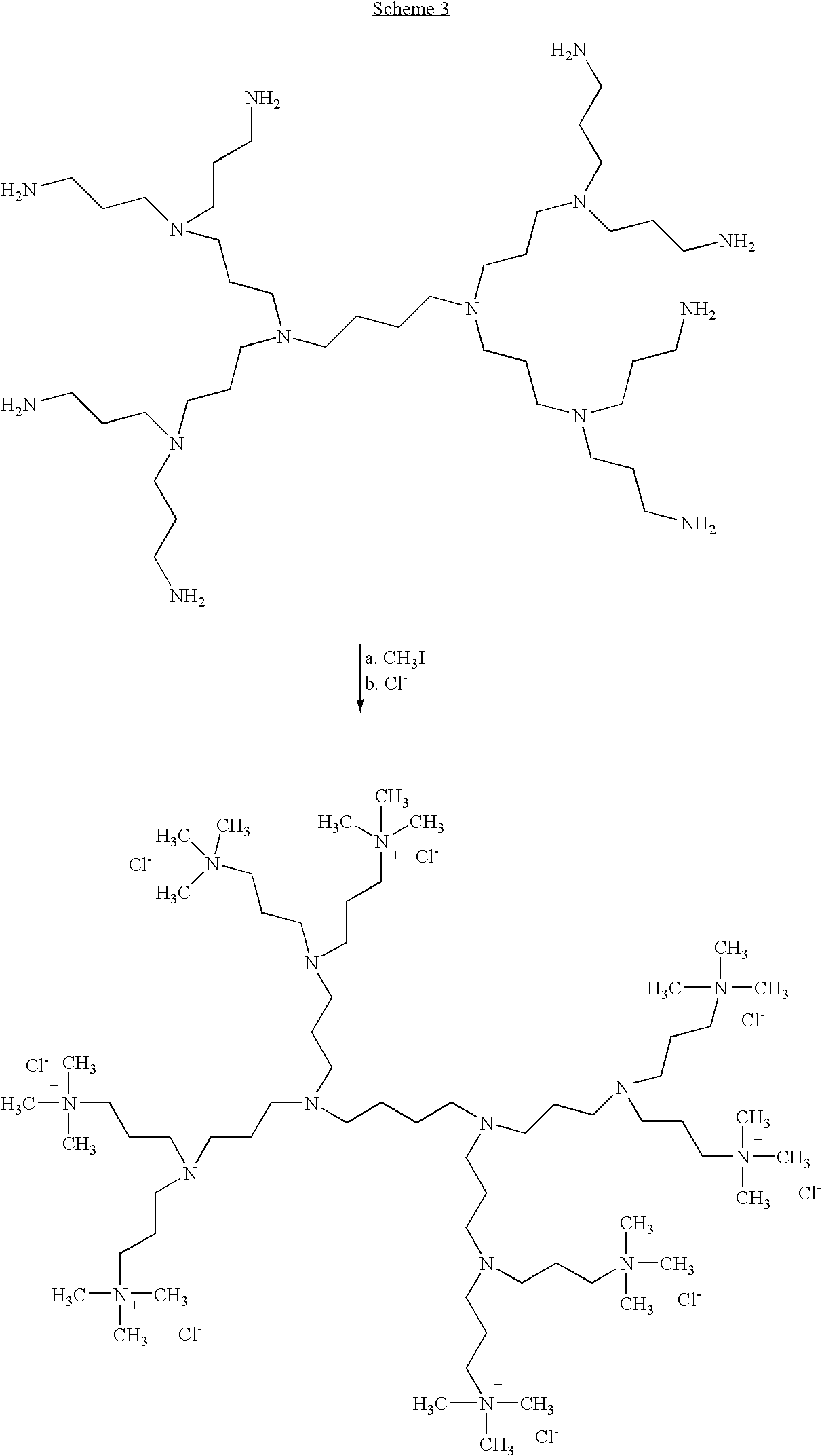 Figure US20080267903A1-20081030-C00033