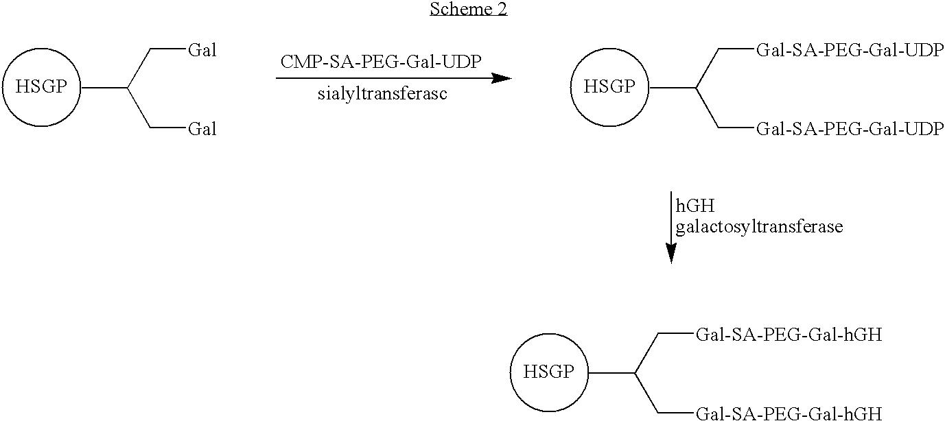 Figure US07932364-20110426-C00003