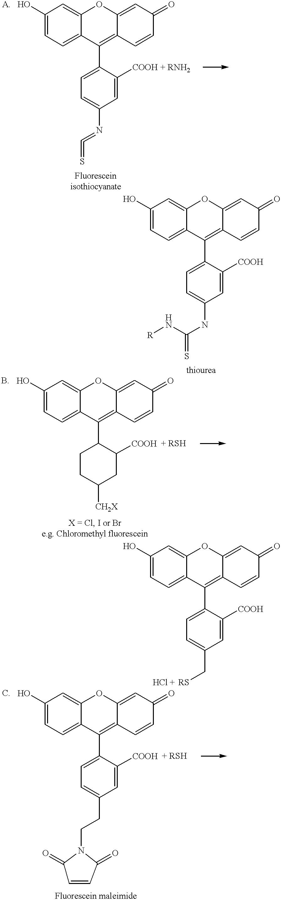 Figure US06232103-20010515-C00011