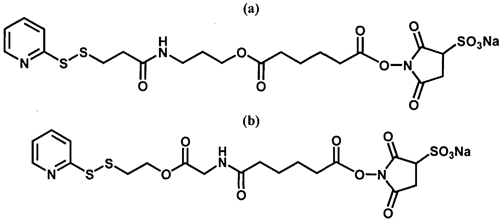 WO2006052790A2 - Biodegradable linkers for molecular therapies
