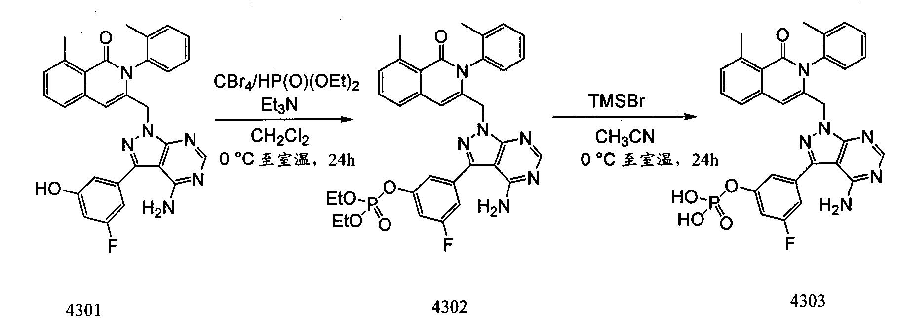 Figure CN101965335BD00933