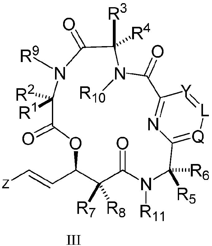 Ru2565076c2