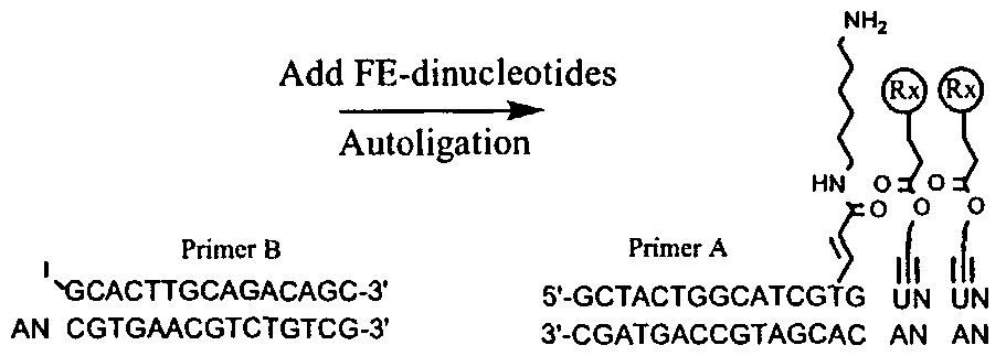 Figure imgf000321_0002