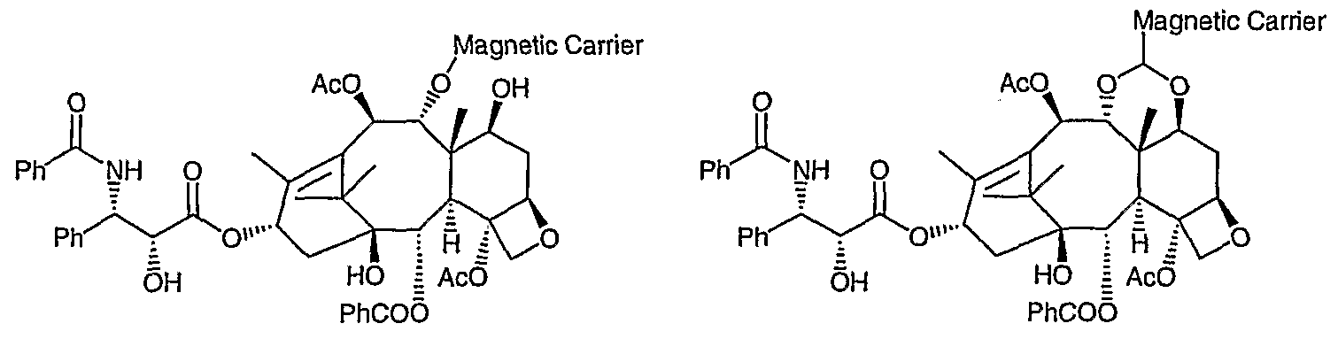 WO2007086882A2 - Biological polymer with differently charged