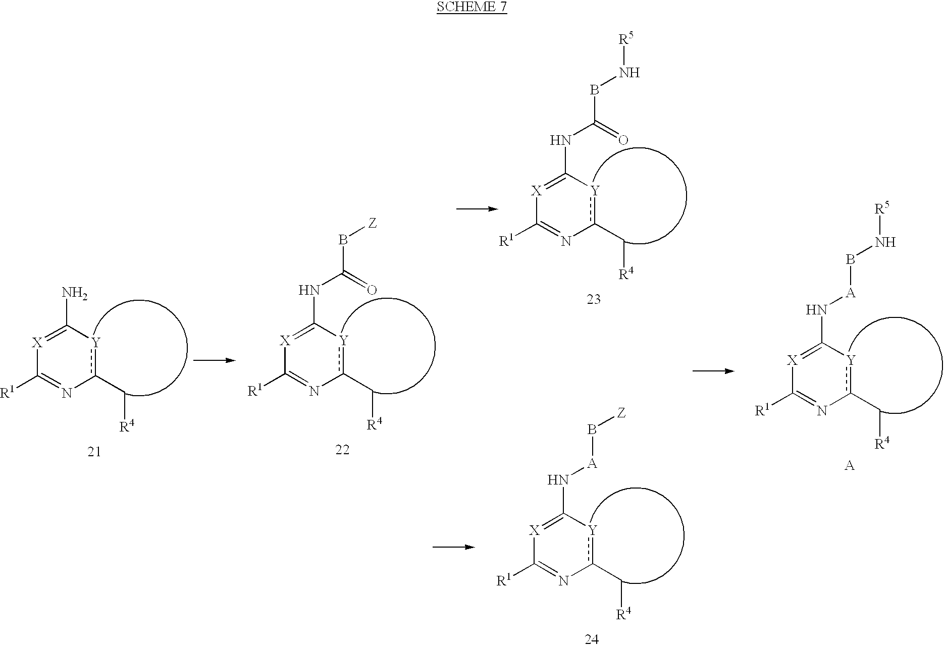 Figure US06506762-20030114-C00025