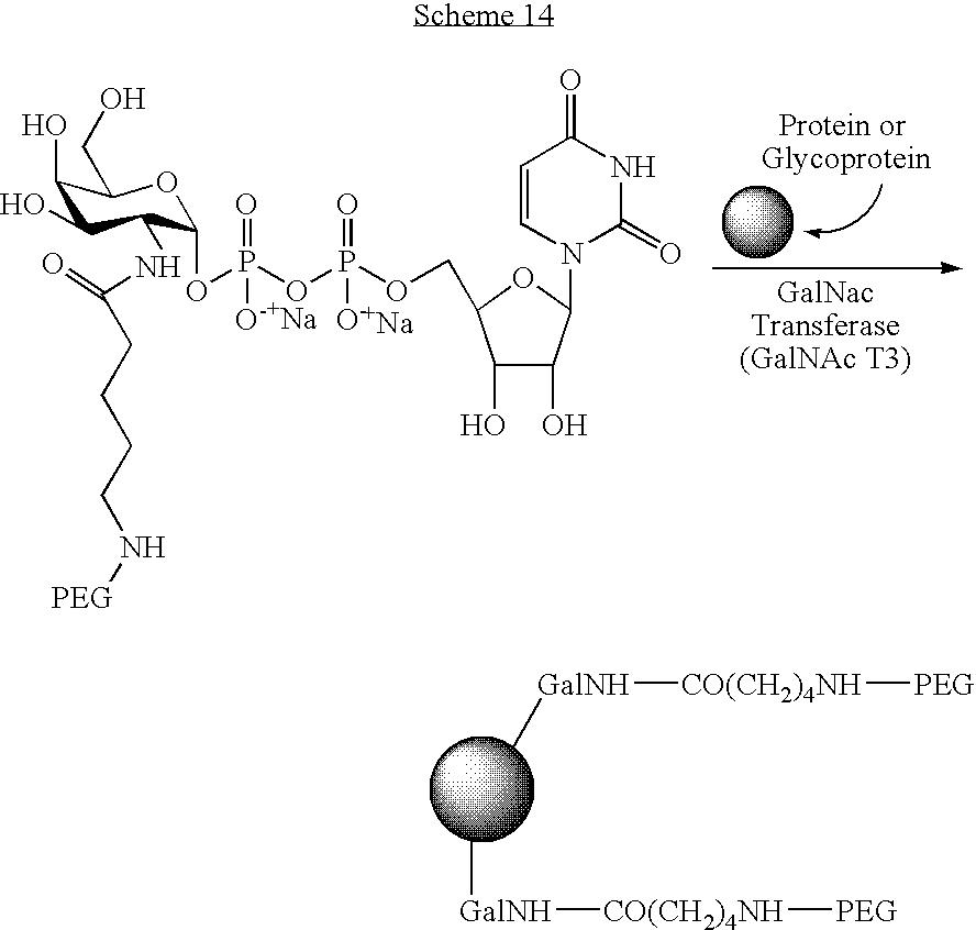 Figure US08008252-20110830-C00121